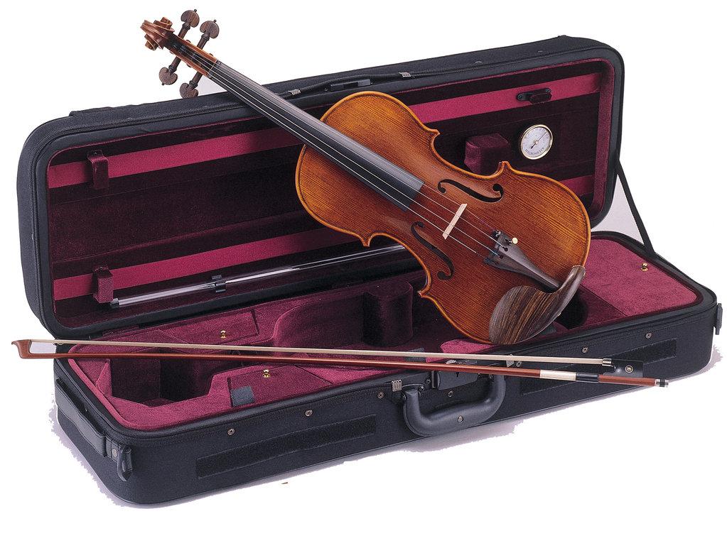 Instrumentos Musicales Ritmo-VS444