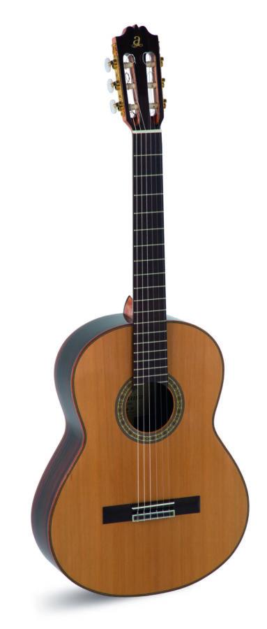 Instrumentos Musicales Ritmo-a10_1_1